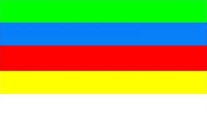 Флаг во время военного переворота