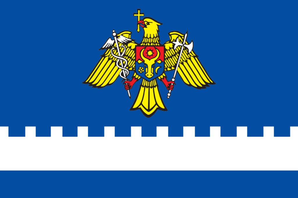 Флаг молдавской таможни