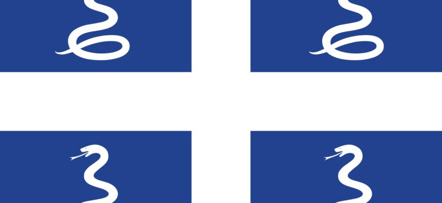 Флаг заморского департамента Мартиники