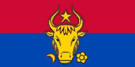 Предлагаемый первый флаг молдавской республики
