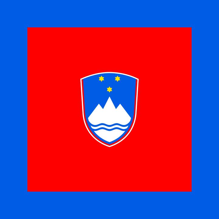 Флаг Председателя Национального Собрания